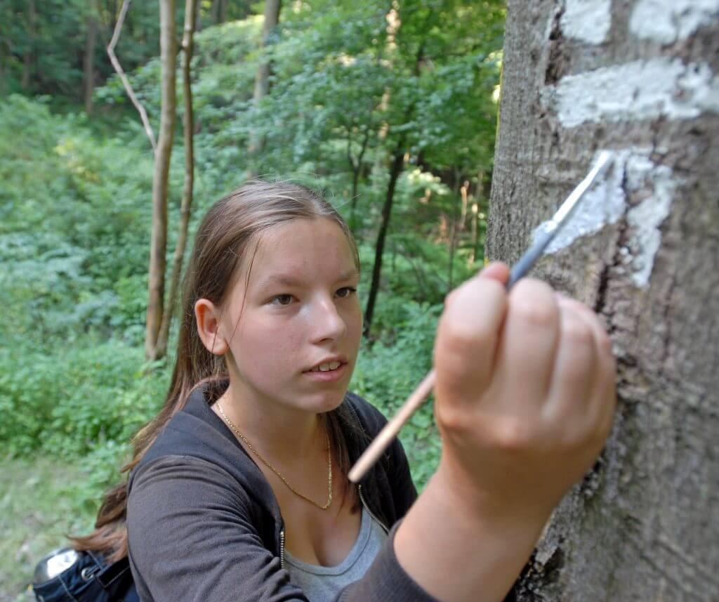 Quelle J. Kuhr - Deutscher Wanderverband SW0_0204kop