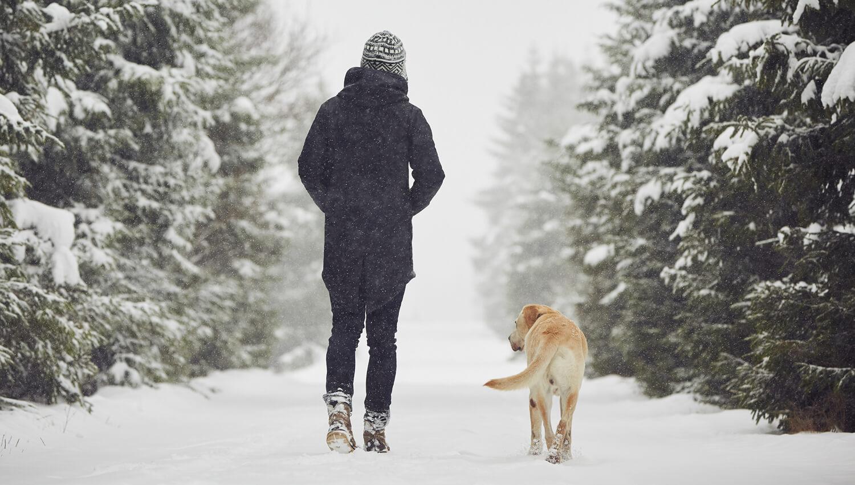 Artikel_SEO_Winterurlaub-mit-Hund_02