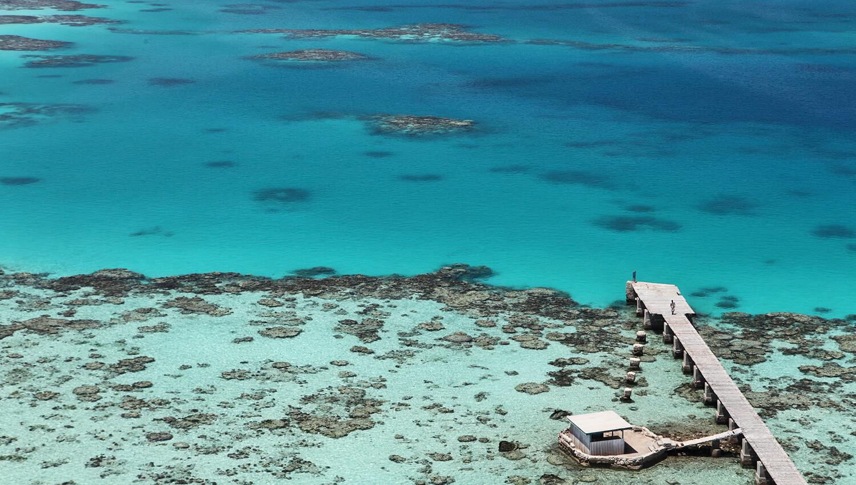 Die Korallenriffe im Meeres-Nationalpark Sanganeb-Atoll