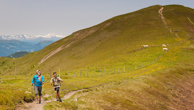 In den Nochbergen erheben sich weit ausladende Gipfel zwischen 1800 und 2400 m Seehöhe
