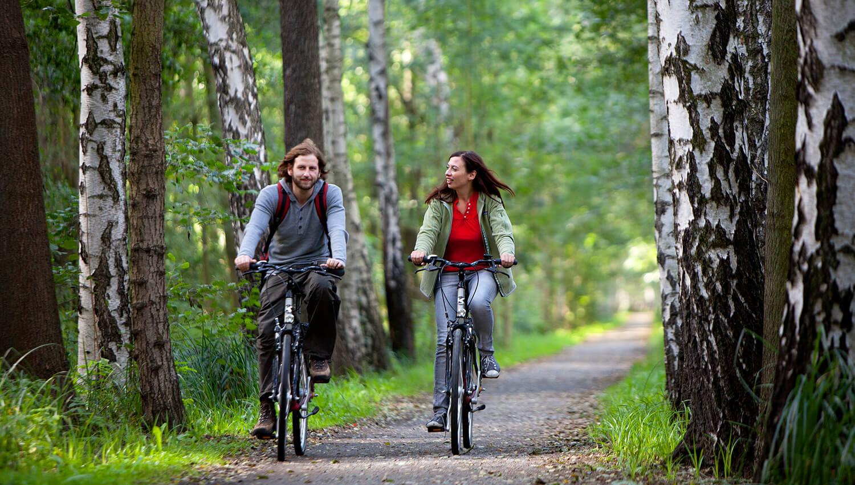 Farradfahrer unterwegs auf dem Gurkenradweg im Spreewald