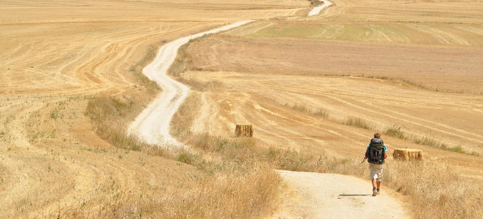 Wanderer folgt dem Jakobsweg durch spätsommerliche Felder