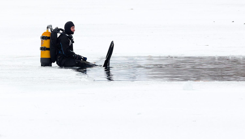 Eistaucher am Rand eines zugefrorenen Sees