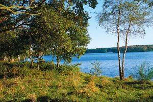 Blick auf den Halterner See