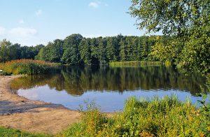 Blick über den Krummer See