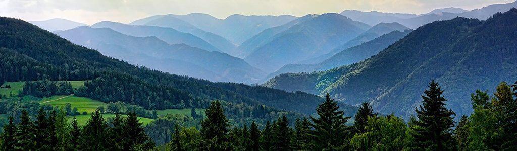 Wald in Deutschland bewaldete Hügel