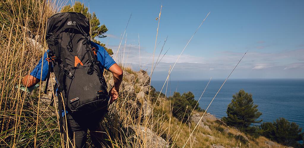 Schmugglerpfad Mallorca: Dißgras an der Nordküste