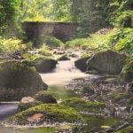 Mystische Lichtstimmung am Wasser im Bodetal, im Hintergrund kleine Brücke
